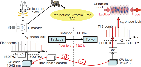 Optical carrier transfer and absolute frequency measurement using a 120-km fiber link between Tsukuba and Tokyo figre