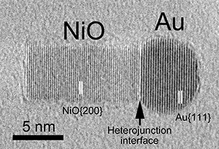 TEM image of the nanoparticle made of a heterojunction of gold (Au) and nickel oxide (NiO) figure