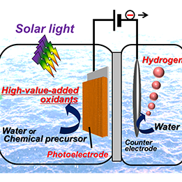 Development of an Efficient Method for Producing Oxidizing Agents and Hydrogen Using  Photoelectrodes