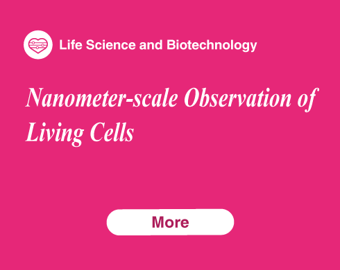 Nanometer-scale Observation of Living Cells