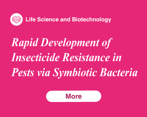 Rapid Development of Insecticide Resistance in Pests via Symbiotic Bacteria