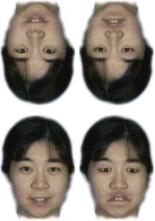 産総研:上下逆さに顔を見せると...