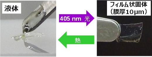 可視光で硬化し、150℃以上の加熱で再び液化する接着剤の写真