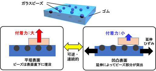 引っ張ると凹凸が生まれ、付着力が連続的に減少するゴムシートの図