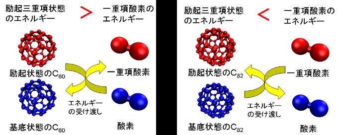 産総研:ナノ炭素材料に自然界最...
