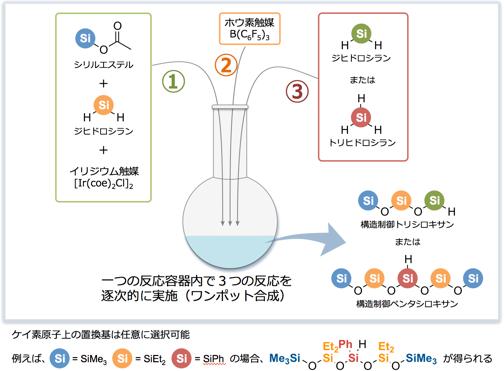 構造制御シロキサン化合物のワンポット合成技術の図