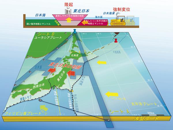産総研:日本列島の地殻変動の謎...
