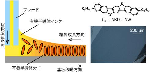 有機半導体インクから大面積単結晶薄膜を塗布製膜する手法の概要図(左)と高移動度有機半導体材料の構造式と2次元単結晶領域の偏光顕微鏡写真(右)