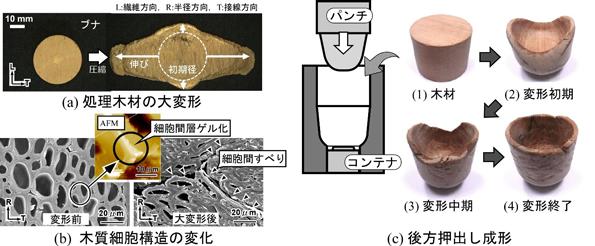 木質流動成形の概略図