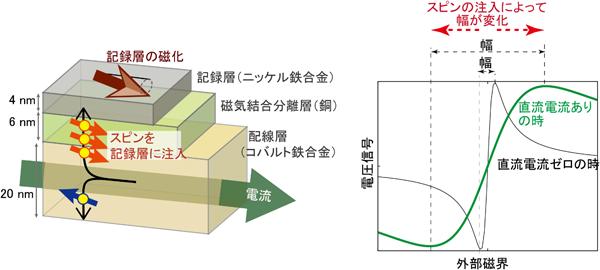 今回作製した素子の模式図(左)と電圧信号の例(右)の図