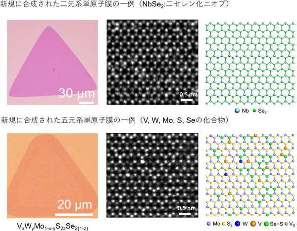 多種多様な単原子膜の合成技術を開発   ページ 2   テック・アイ技術 ...